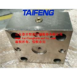 供应泰丰TLFA50DBT-7X调压控制盖板