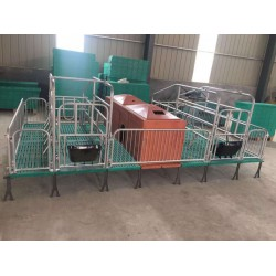 猪用产床 小猪复合保温箱母猪产床养猪设备